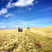 Bild könnte enthalten: Wolken, Himmel, Gras, im Freien und Natur